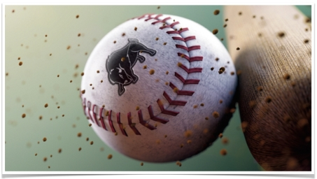 Harding Baseball Game.001